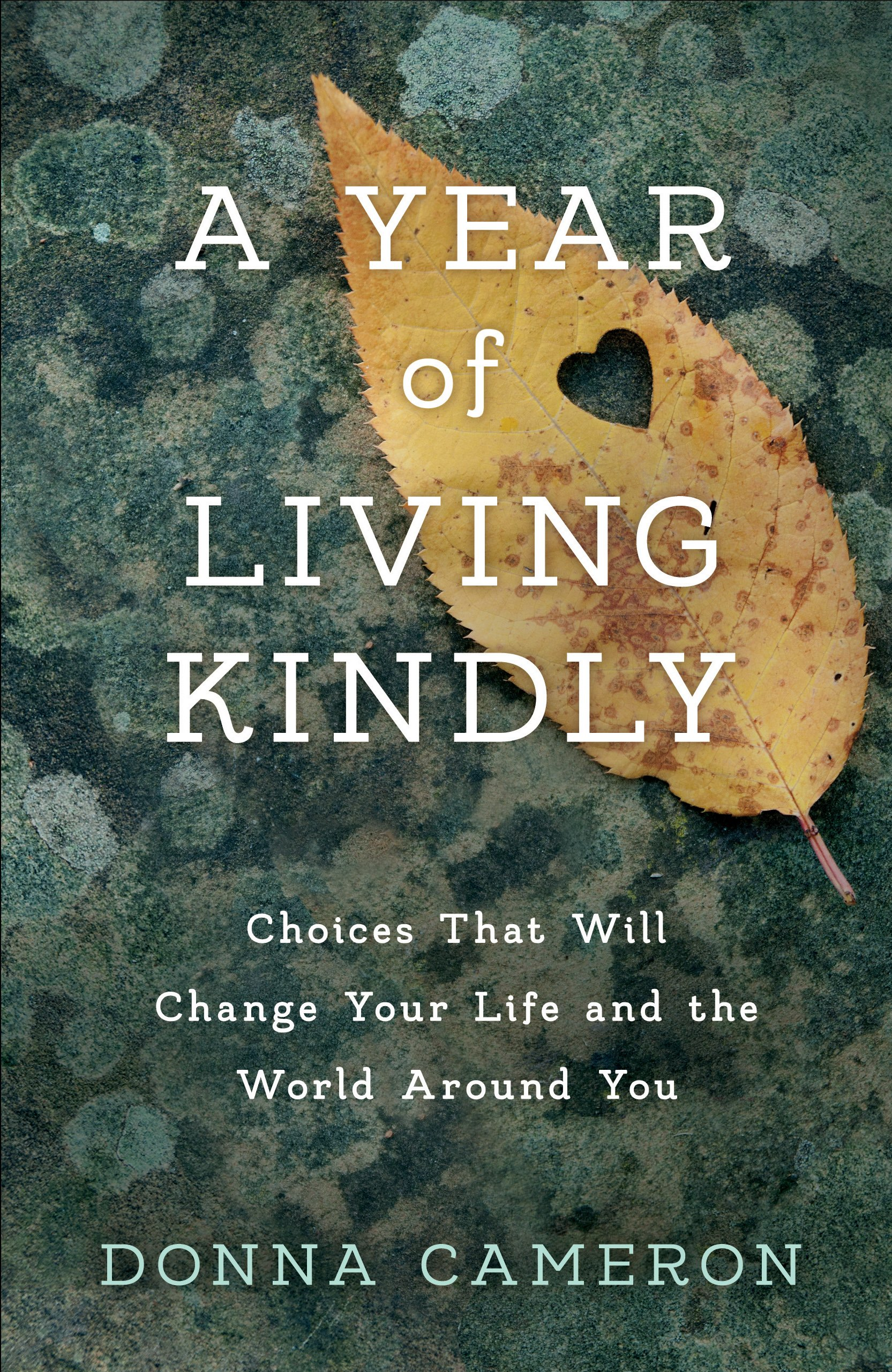 Indie Groundbreaking Book: A Year of Living Kindly